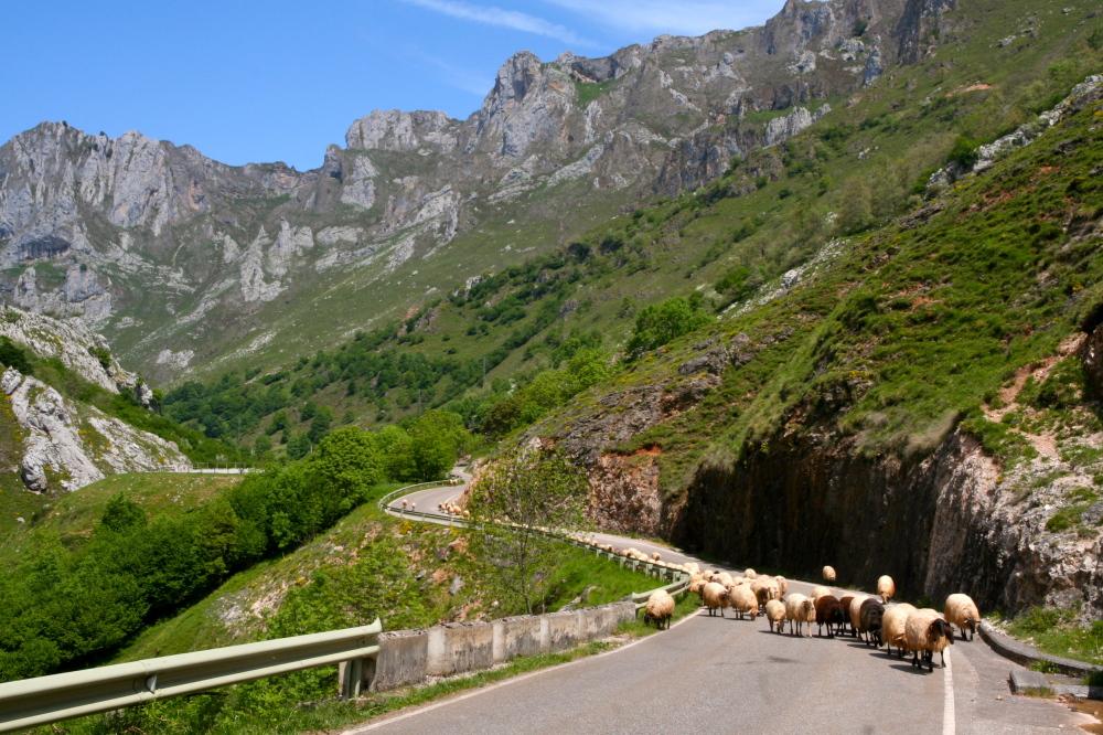 asturian traffic jam