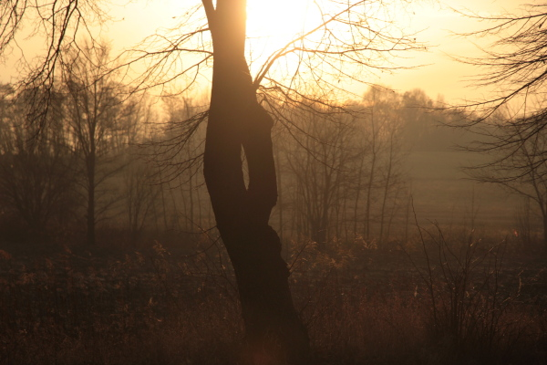 more winter sunset