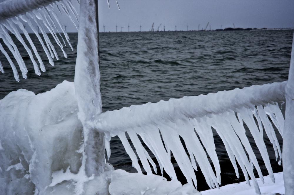 sea icicles at sea wall