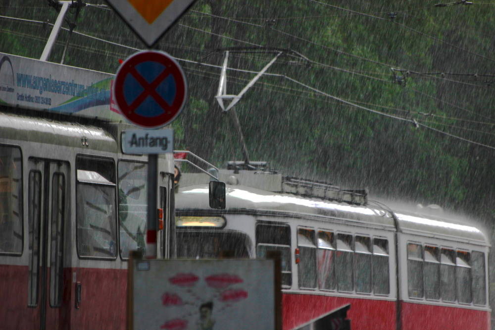 Vienna summer showers