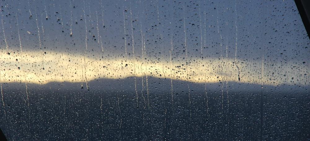 rain coast
