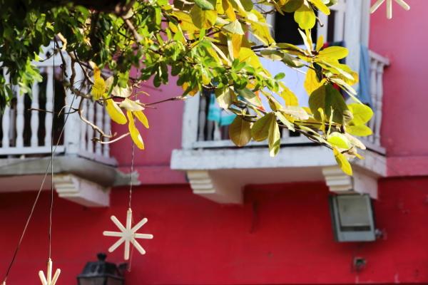 cartagena colours
