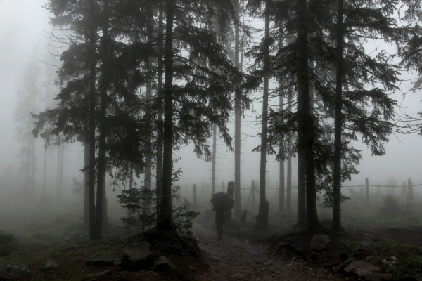 Memories of Summer: Zakopane Edition