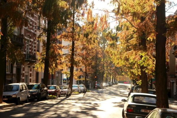 Avenue de la Brabançonne