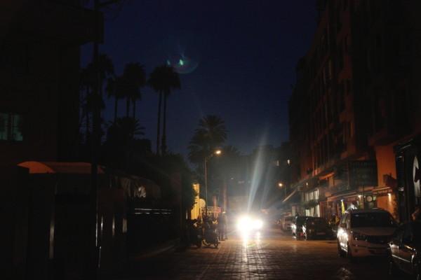 Marrakesh gardens at night