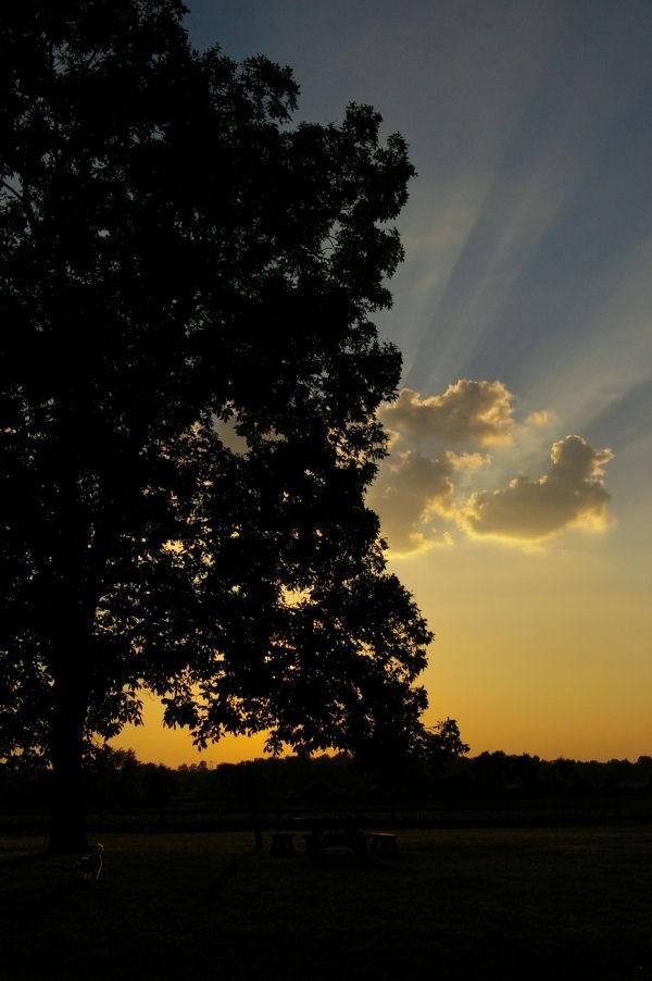 heaven's splendor