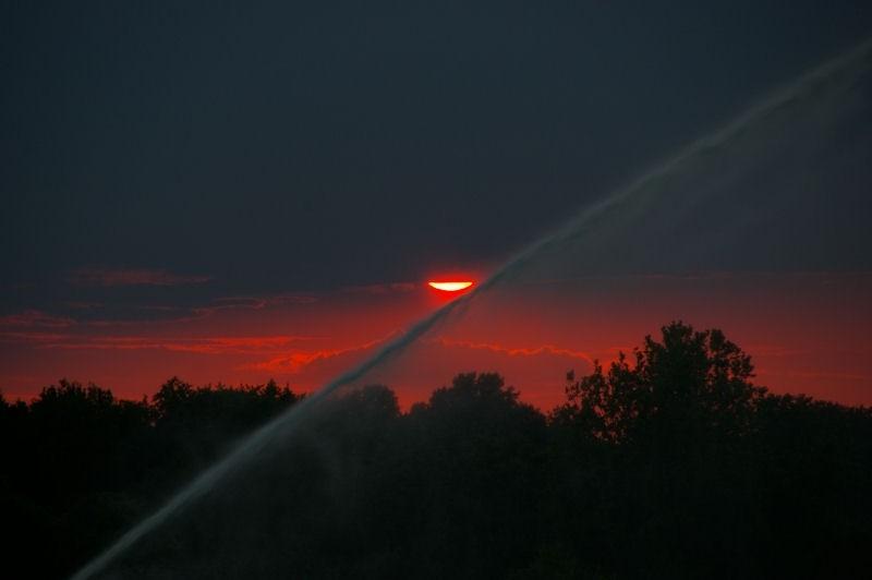 sprinkler sunset (2)