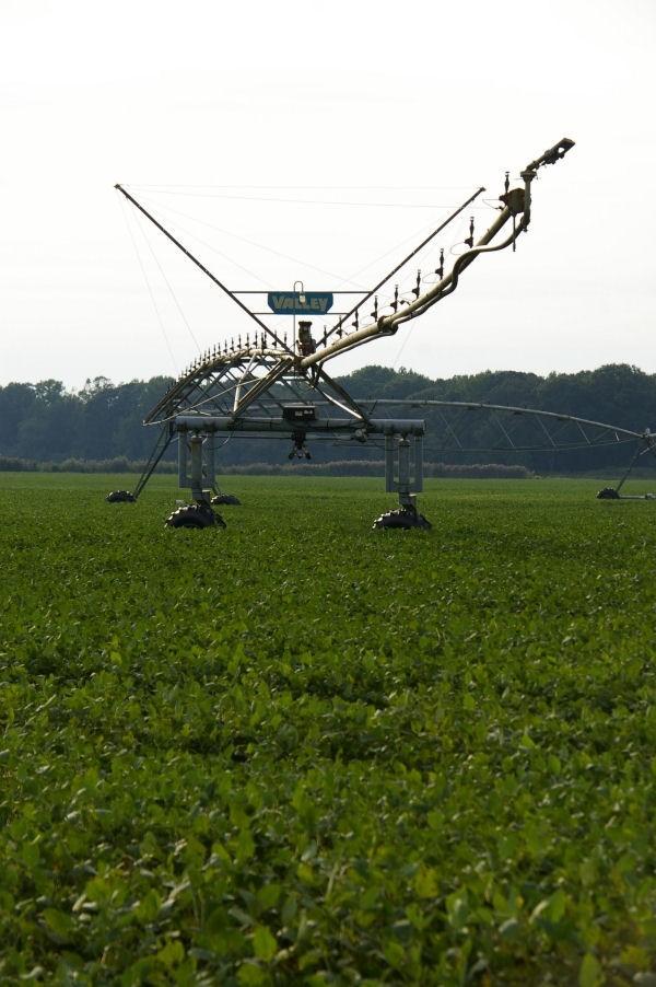 garden state - irrigation