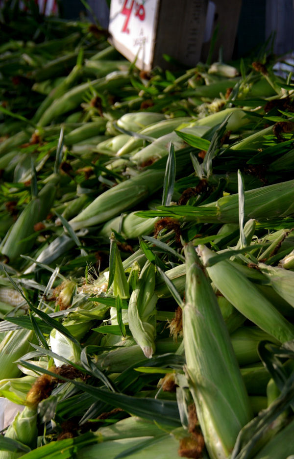 garden state - farm stand corn