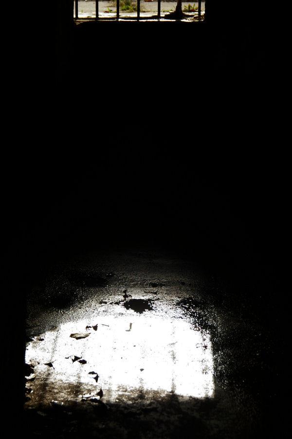 fort mott: light in the darkness