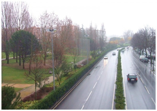 rainy day Sinçães park