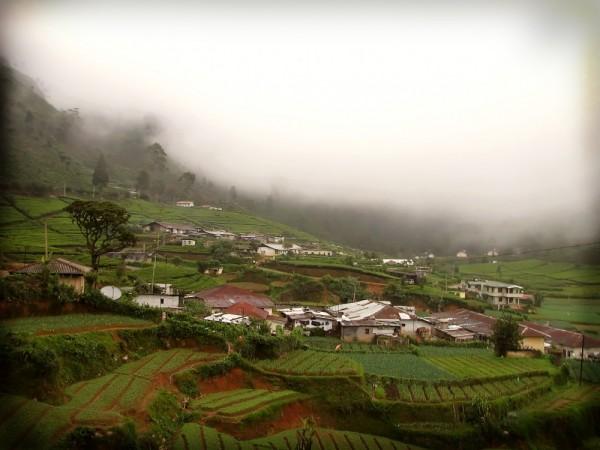 village among the tea gardens of srilanka