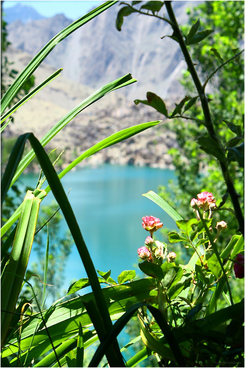 upperkachura lake through foliage