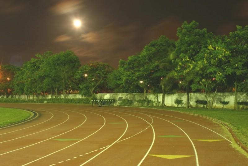 Noche olimpica