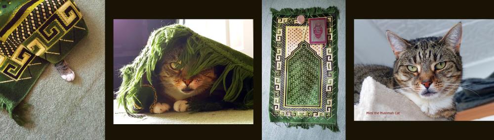 Ramadhan & Mimi the Muslimah Cat