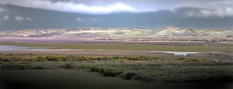 Panoramic Landscape of Ireland