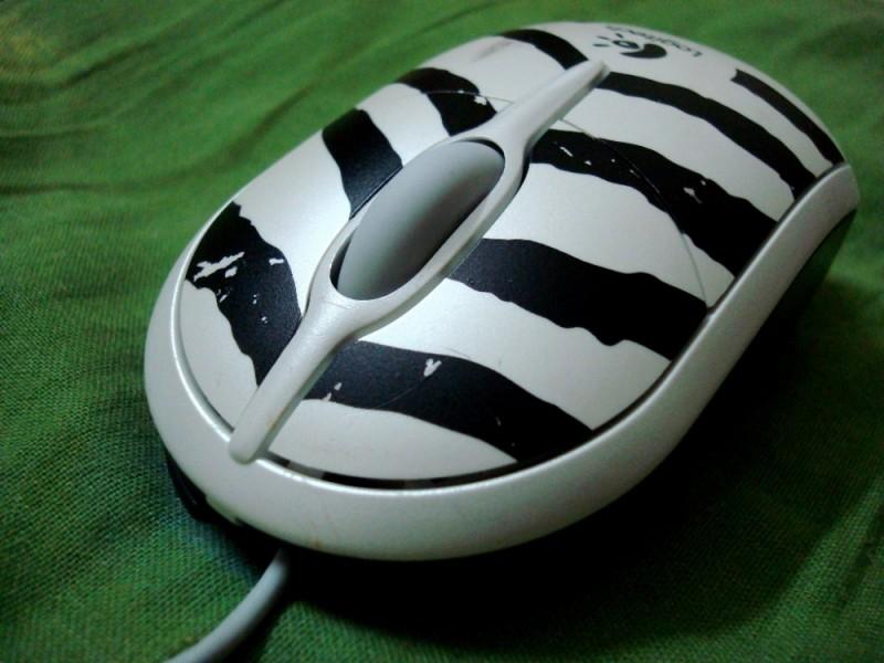 The Zebra Mouse