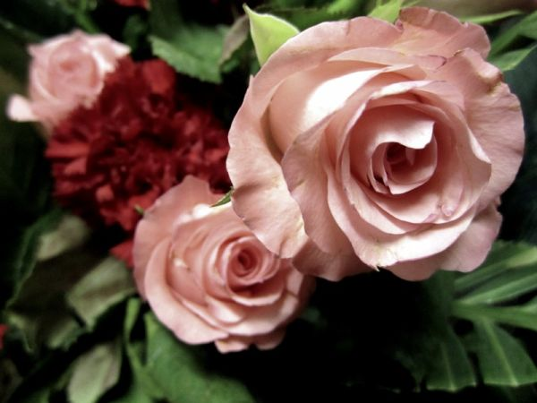 Bouquet o Roses