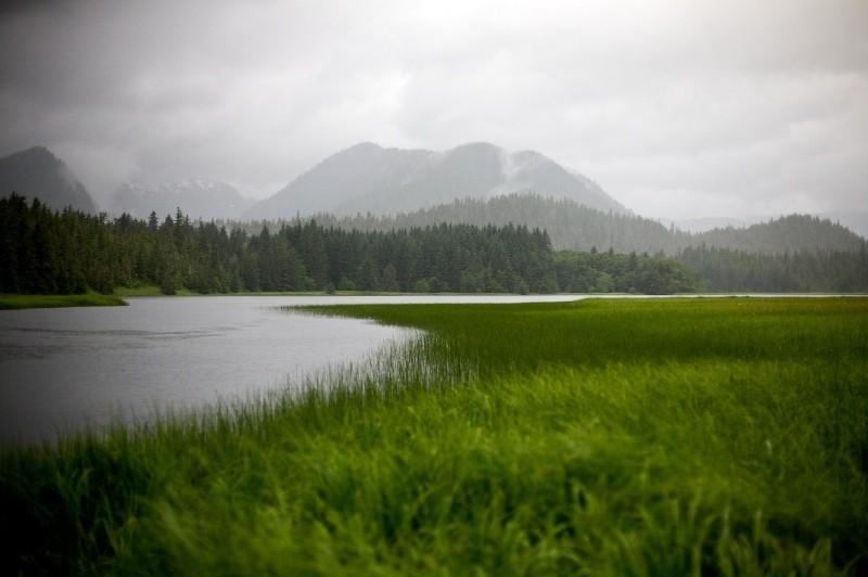 Alaskan Landscape I