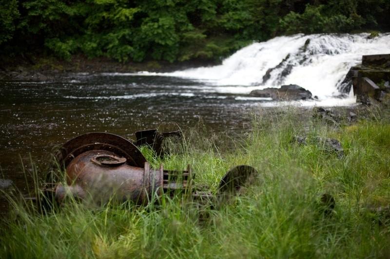 Near the Salmon Run