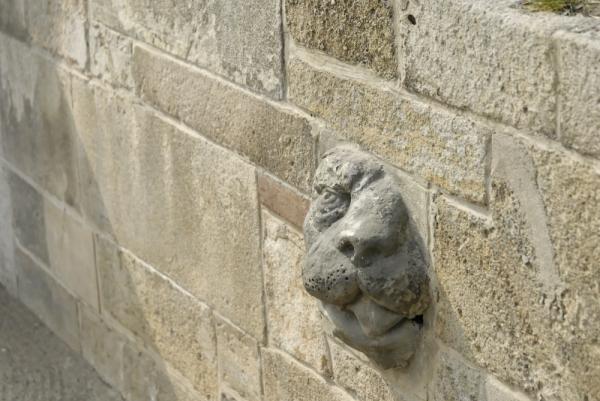 lion prague mur