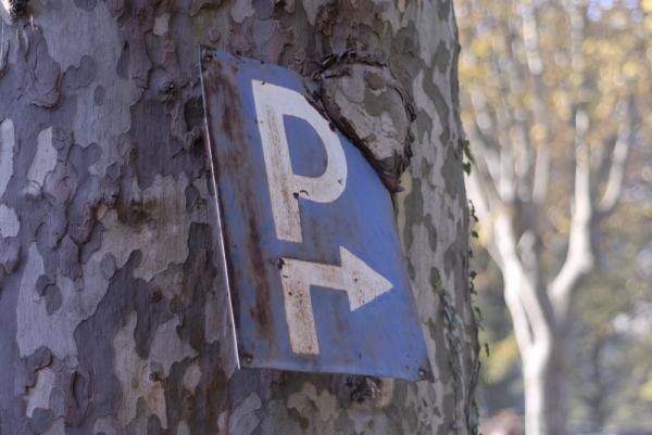 Platane parking mangé SAINT PAULET DE CAISSON GARD