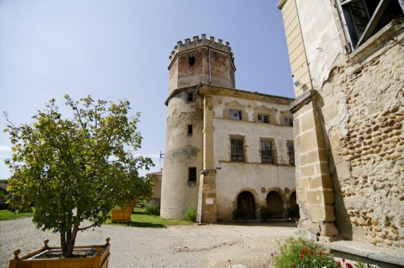 Chateau Isere tour