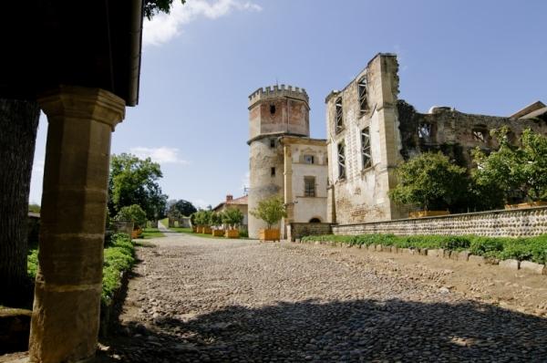 Chateau Isere