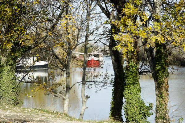 Arles canal bateau