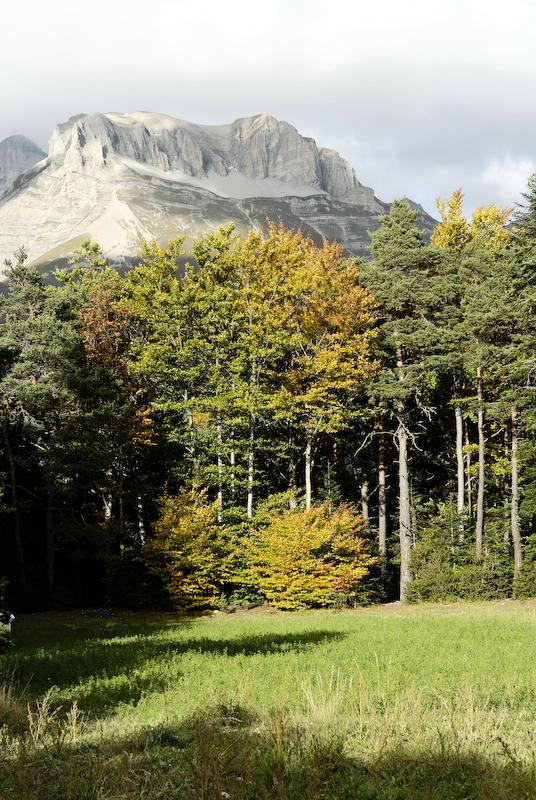 Montagne automne Lus-La-Croix-Haute Drome 26