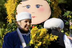 Mandelieu Mimosa portrait