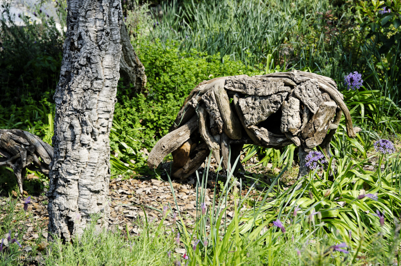 Eden Project St Austell Cornouailles