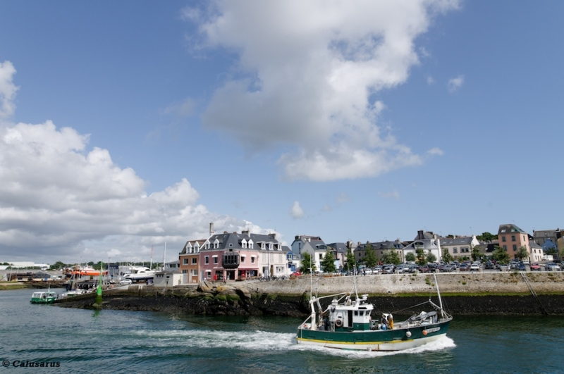 Concarneau Finistere port