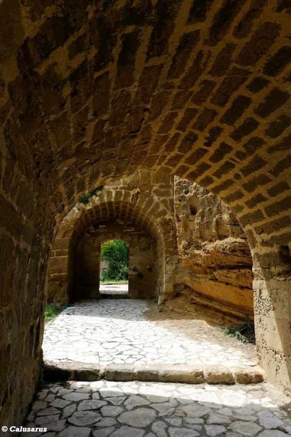 Drome chateau Suze-La-Rousse 26