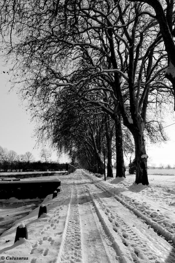 Montelier drome neige n&b