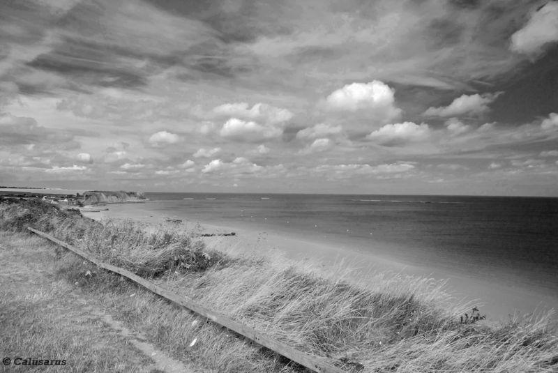 Omaha-Beach N&B paysage