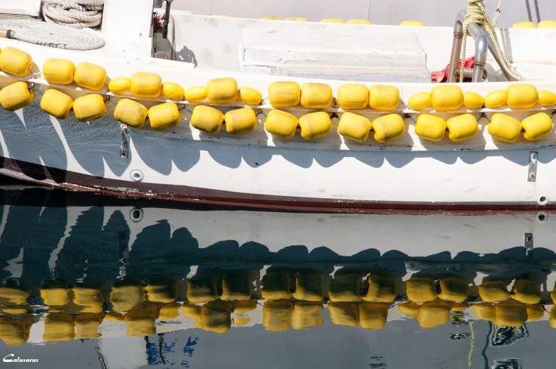 Zadar Croatie eau reflet