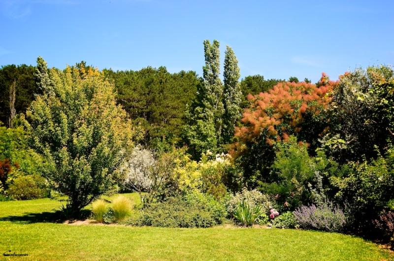 Drome 26 jardin Montvendre