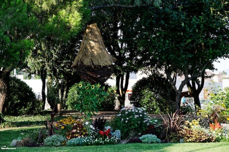 Montélier Drome 26 jardin