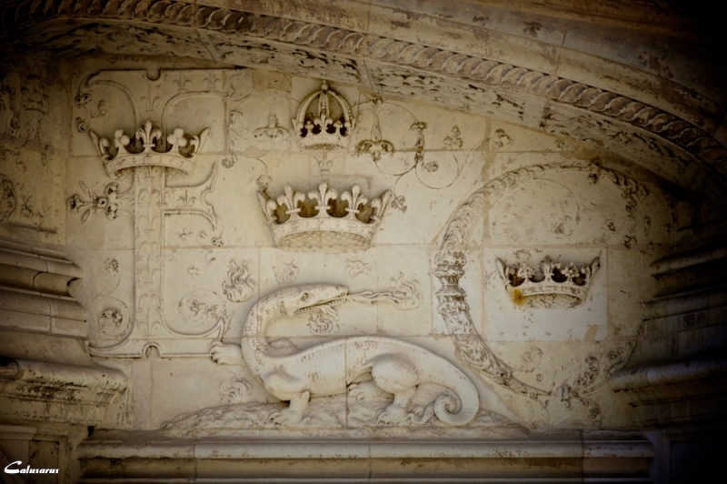 Blois detail chateau architecture