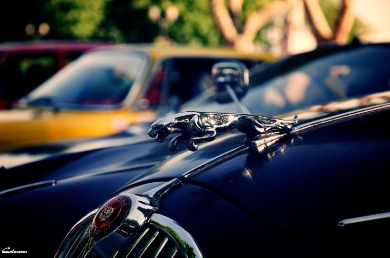 Automobile Ardeche gros-plan