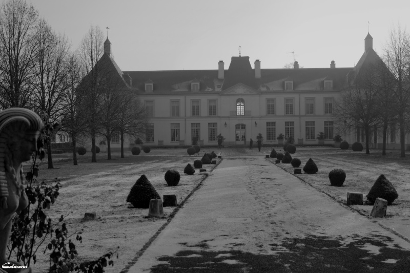 Chateau BD N&B