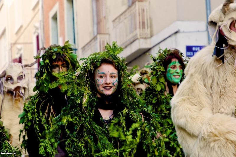 Carnaval Drome 26 Romans-sur-Isere Portrait