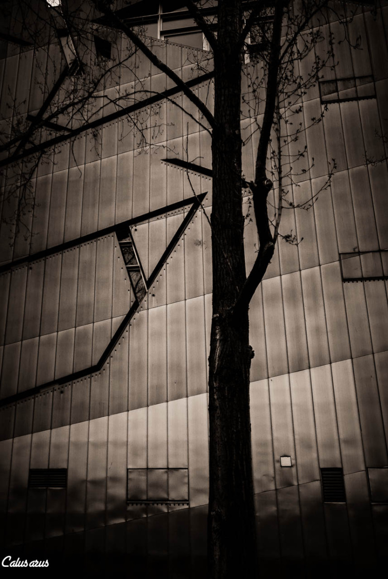 BERLIN musée