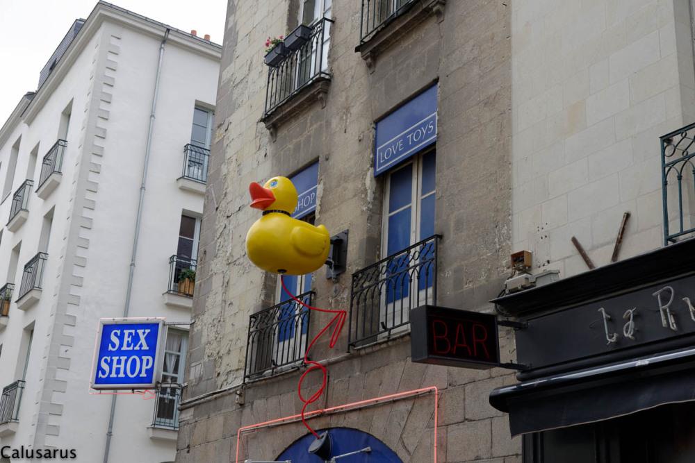 Enseigne Nantes