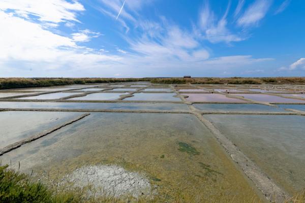 Guerande paysage eau