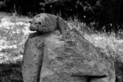 Statue animal N&B