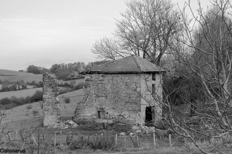 Ruine Drome 26 N&B