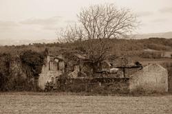 Ruine paysage Arbre 26 Drome Upie