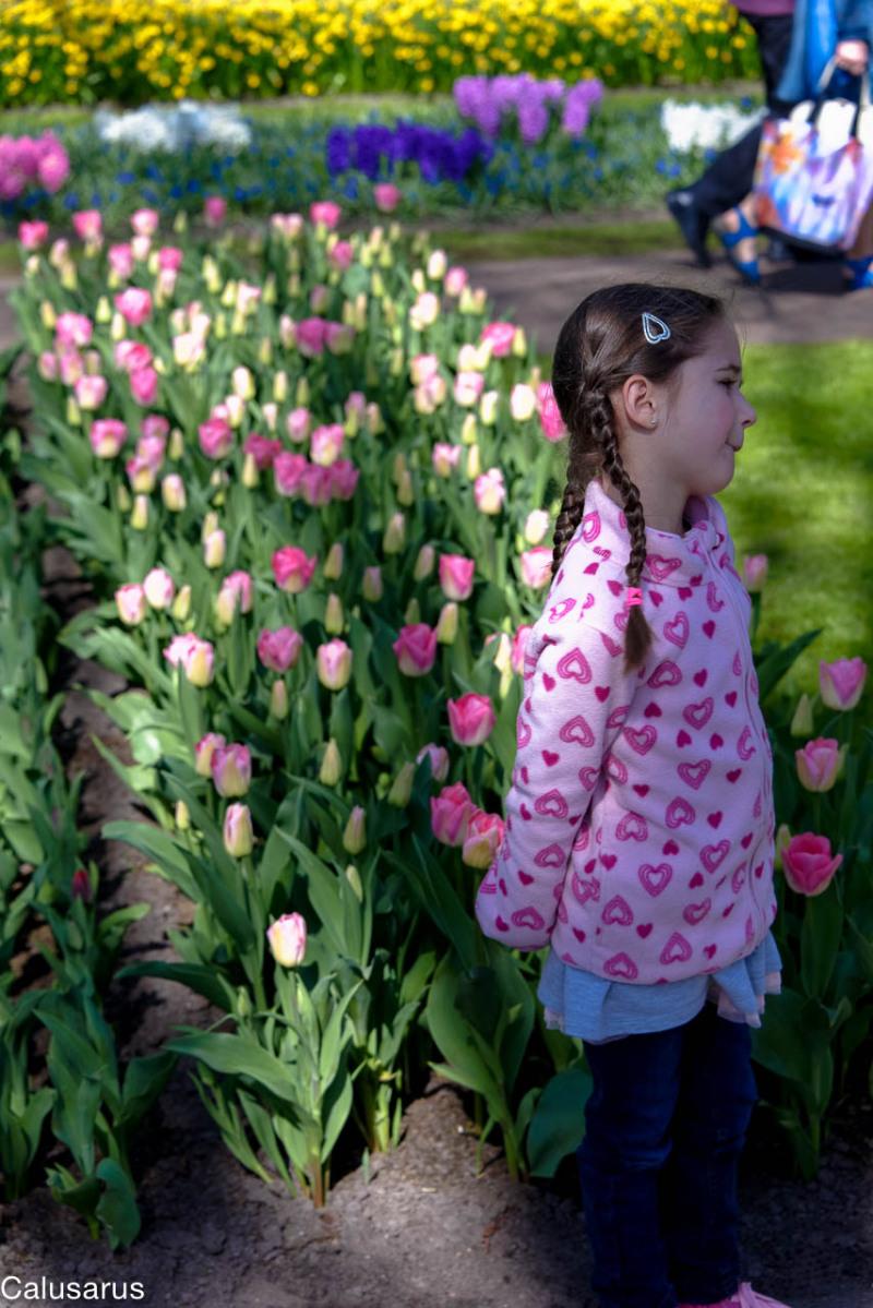 Enfant fleur Amsterdam